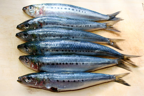 how-to-clean-sardines-1