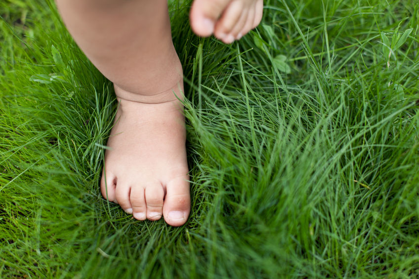 25487575 - small baby feet on the green grass.