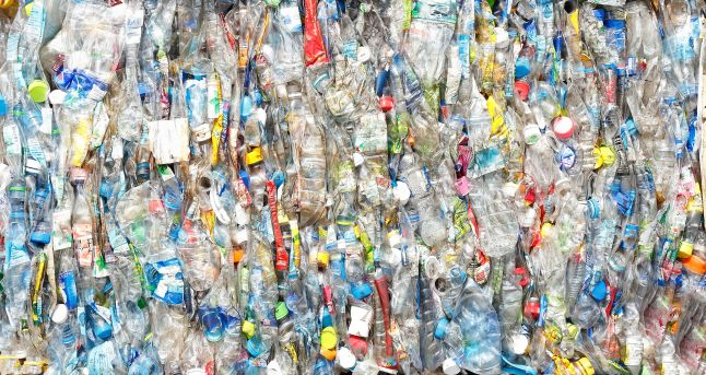 41100522 - bottle pet plastic  prepare to recycle
